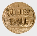 Volleyball Chenille Letter Pin  volleyball chenille letter pin, volleyball chenille letter, volleyball pin, volleyball, school awards, school pins