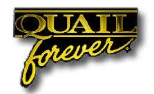 Quail Forever Pin