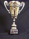 Racing Cup Award  checkered flag cup, racing cup award winner, metal checkered flag cup