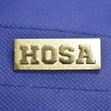 HOSA Chenille Letter Pin year chenille letter pin, year chenille letter, year pin, year, school awards, school pins