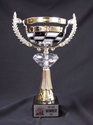 Racing Cup - Acrylic Jewel Trophy checkered flag cup, racing cup award winner, metal checkered flag cup