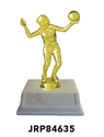 Volleyball - Trophy YMCA volleyball trophy, where to buy volleyball trophy, YMCA individual trophy, female volleyball trophy